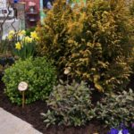 midatlantic-home-and-garden-show-2012-061